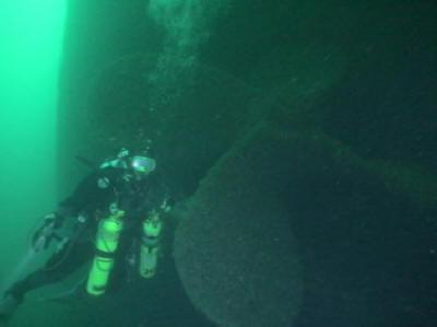 Ann Arbor 5 - Diver at Prop